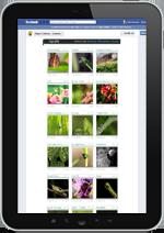 Bild Tablet Gewinnspiel App